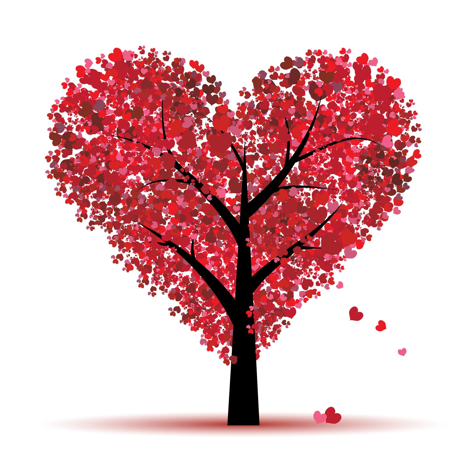 Saint valentin une id e cadeau offrez un week end aux toits de lyon - Idee de saint valentin ...